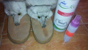 Легко чистим замшевую обувь средством AMV