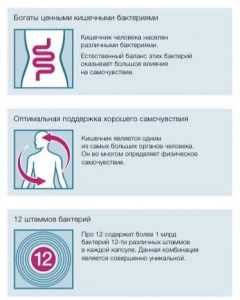 LR Lifetakt Про12 (пробіотики) Набір з 3-х штук. Для здорового кишечника і гарного самопочуття.